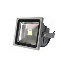 Floodlight 50 Watt 12V DC - Generic Series