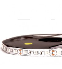 HiLed (Normal Series) Strip SMD5050-300Led Indoor IP33